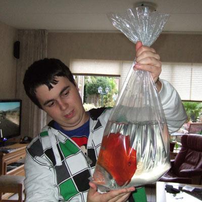 Thumbnail: Het overwennen van vissen naar je eigen aquarium