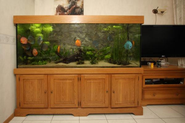 Eiken aquarium 200x80x70
