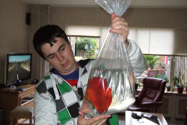 Het acclimatiseren van vissen naar je eigen aquarium