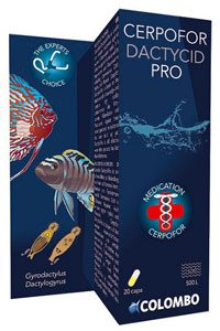 Verpakking: Colombo - Dactycid pro