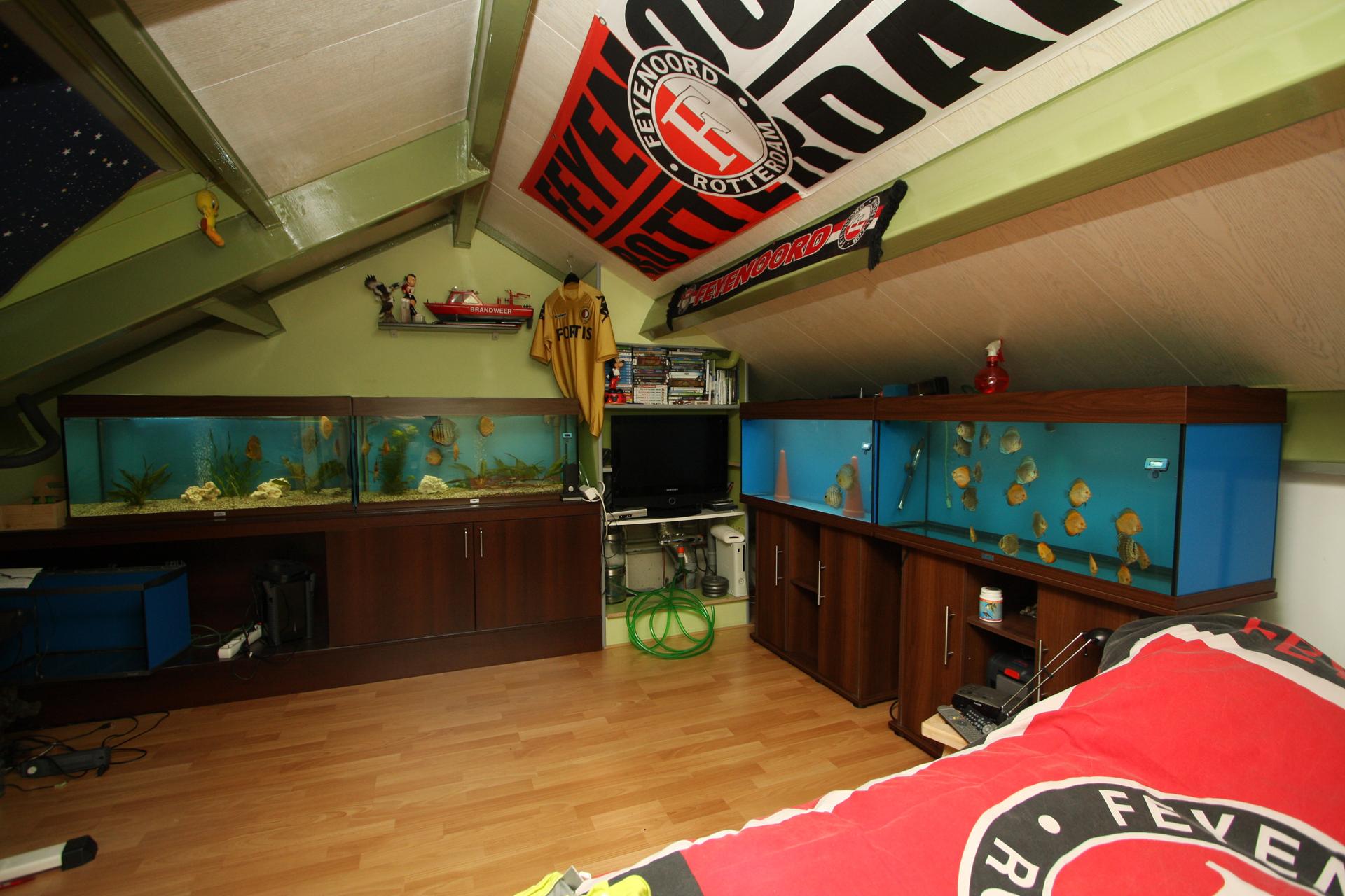 Aquarium fotografie voorbeeld foto: Groothoek opnamen van de discuszolder