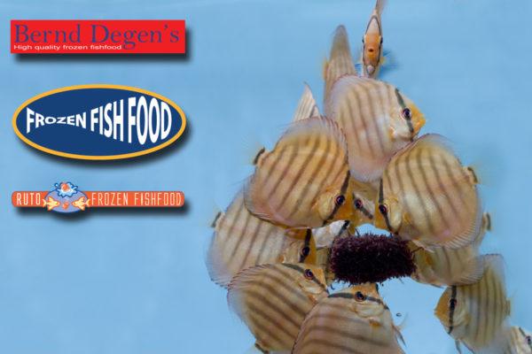 Voedingswaarde diepvries vissenvoer