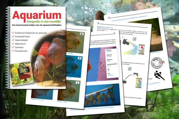 E-Book – Aquariumfotografie