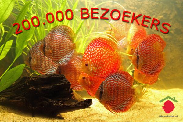 200.000ste bezoeker op Discuszolder.nl