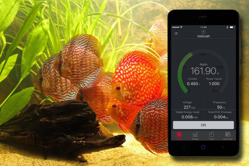 Energiekosten berekenen van het aquarium is gemakkelijker dan je denkt.