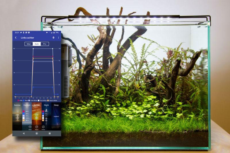 De moderne aquarium ledverlichting kan je met een App instellen. Deze mogelijkheden behoren tegenwoordig tot de standaard.